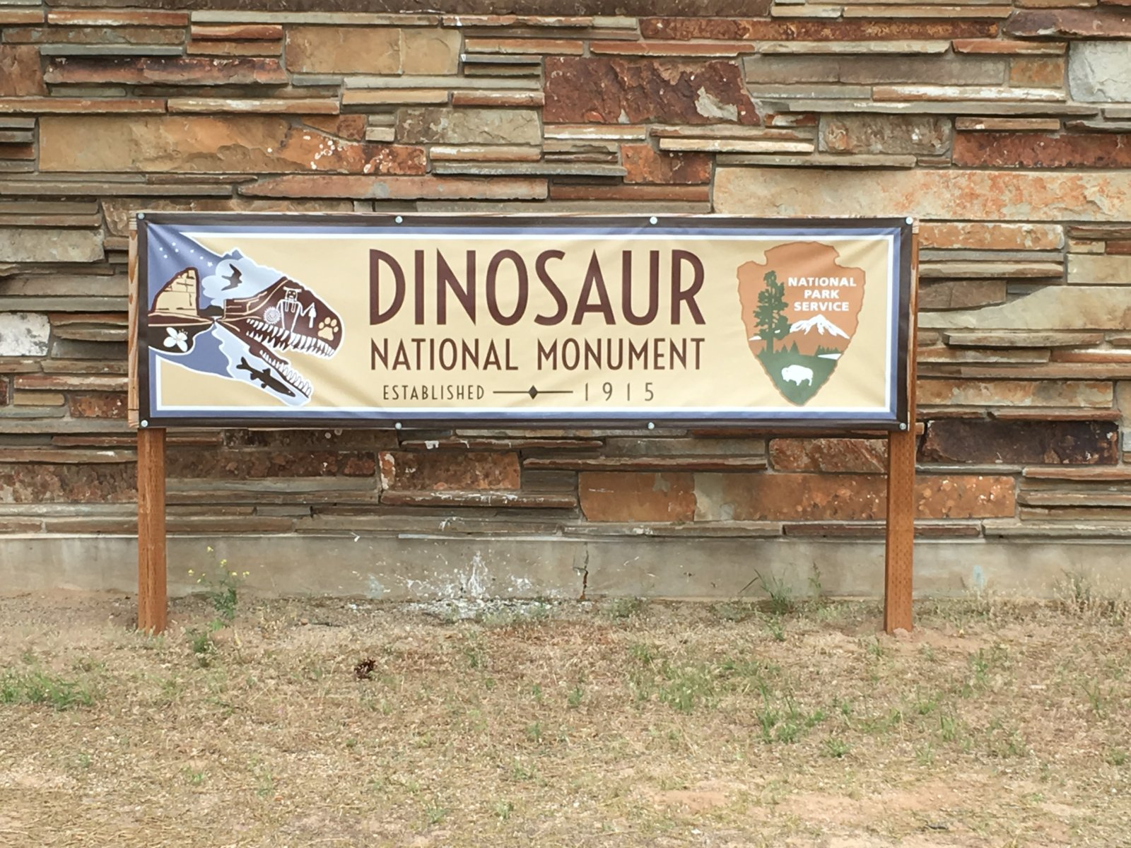 613-Dinosaur01