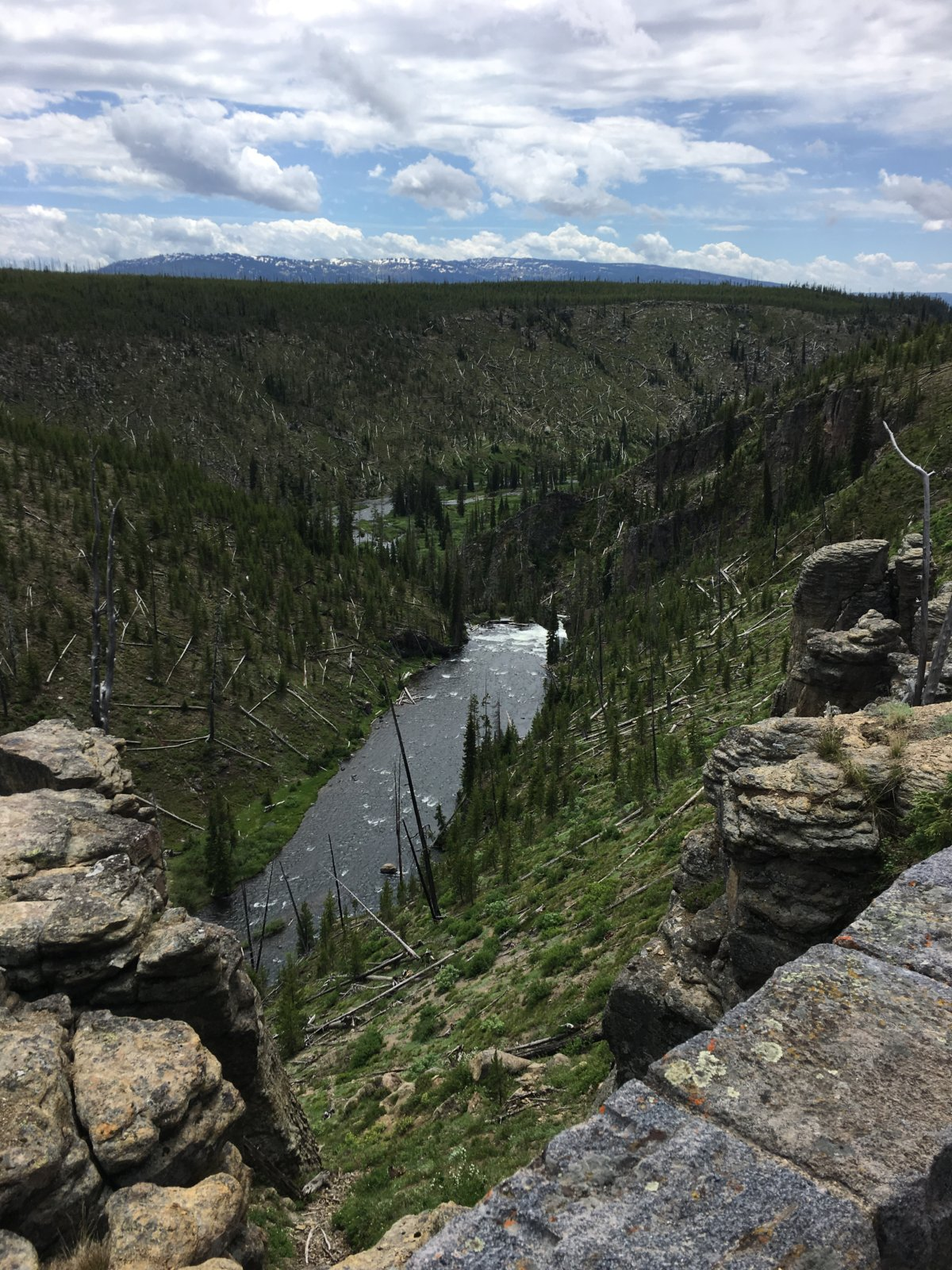 615-YellowstoneView01